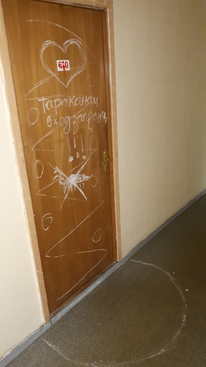Как правильно использовать мелки от тараканов Общежитие, Тараканы, Креатив
