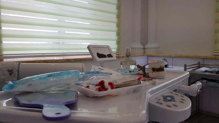 Хэйхэшные зубья - 2 Китай, Хэйхэ, Зубы, Протезирование, Стоматология, Собака, Лечение, Металлокерамика, Видео, Гифка, Длиннопост