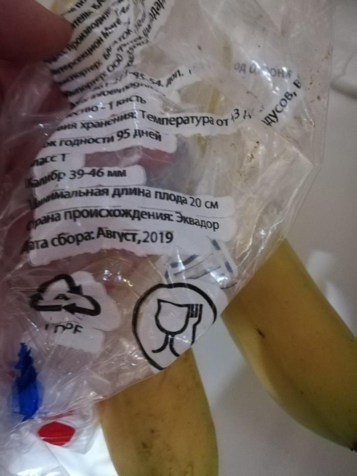 Бананы из будущего Банан, Будущее, Супермаркет магнит