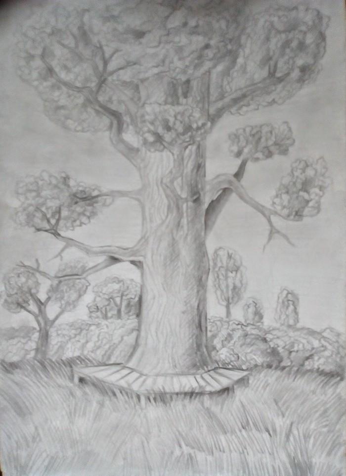 Наброски Природа, Рисунок карандашом, Длиннопост