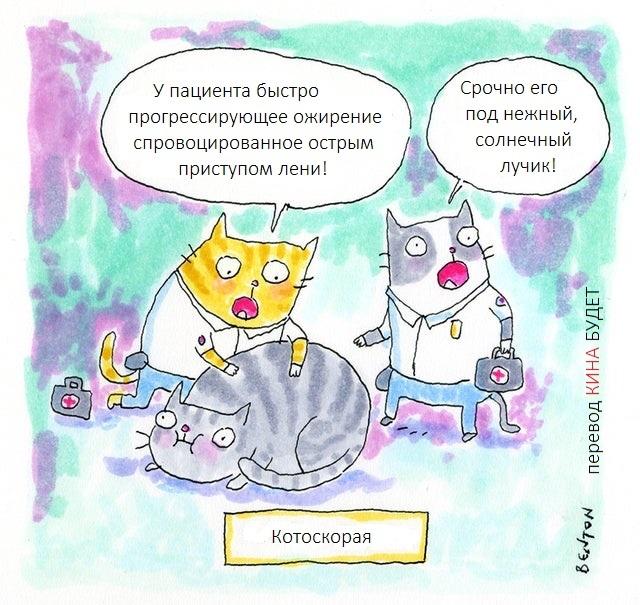 Котоскорая Кот, Скорая помощь, Комиксы