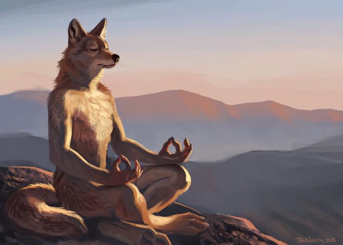 Breathing in the Sun Фурри, Furry Art, Furry Canine, Койот, Утро, Медитация, Trunorth