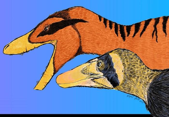 В Таиланде открыли двух новых тероподов — «льва» и «гепарда». Окаменелости ждали своего часа тридцать лет Палеонтология, Наука, Животные, Эволюция, Палеоновости, Динозавры, Длиннопост