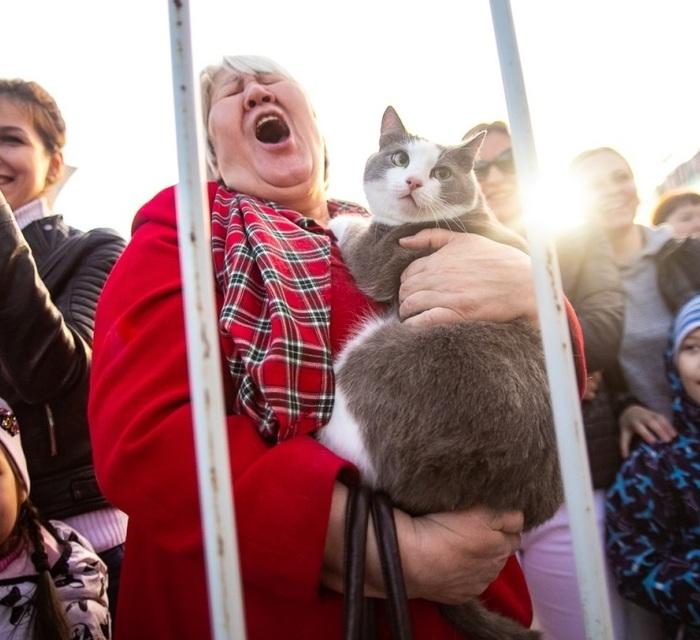 Просто фанатка на концерте Иванушек....... с котом...