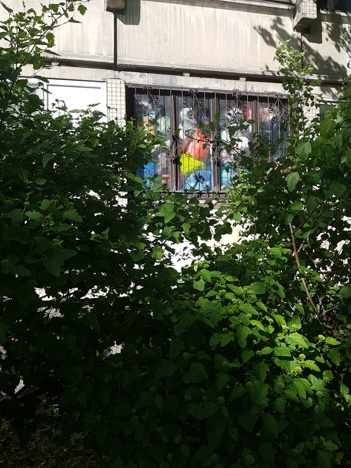 Небольшой беспорядок Мусор, Квартира, Санкт-Петербург