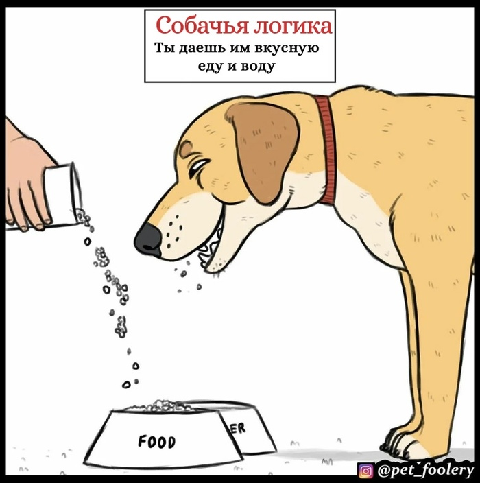 Собачья логика Pet Foolery, Собака, Комиксы, Длиннопост