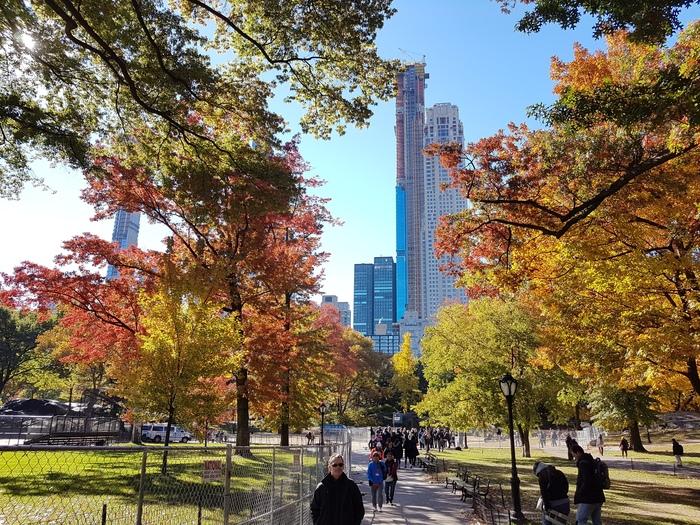Осень в Нью-Йорке Нью-Йорк, Центральный парк, Осень, Длиннопост