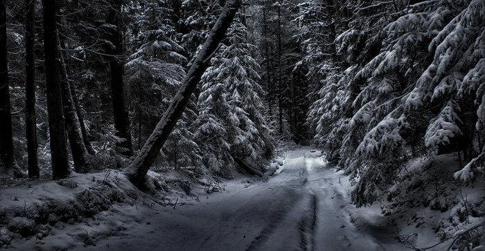 Охлаждающий пост про Новый год Новый год, Мороз, Неудача, Гифка, Длиннопост