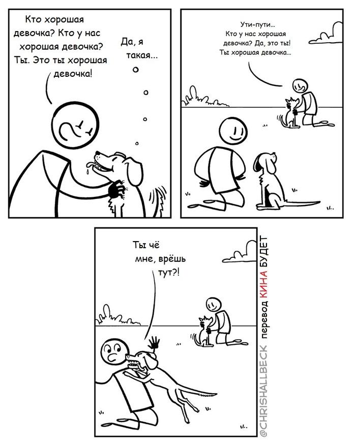 Кругом обман Собака, Девочка, Комиксы, Chrishallbeck