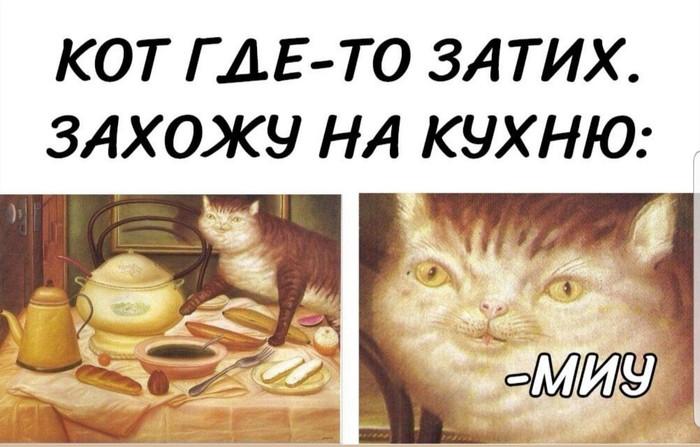 Кот затих