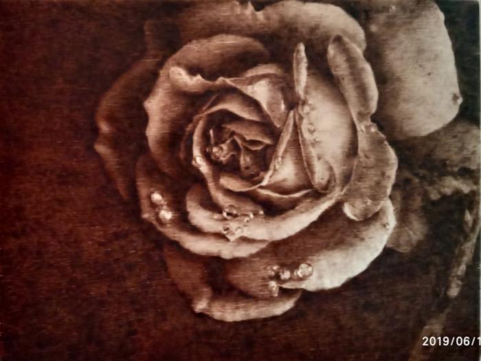 Роза - выжигание по дереву Пирография, Выжигание, Роза, Рукоделие с процессом, Длиннопост
