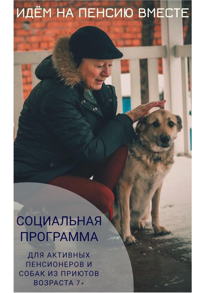 Уходим на пенсию вместе Пенсия, Старость, Собака, Благотворительность, Бабушка, Приют для животных, Помощь животным, Животные, Длиннопост
