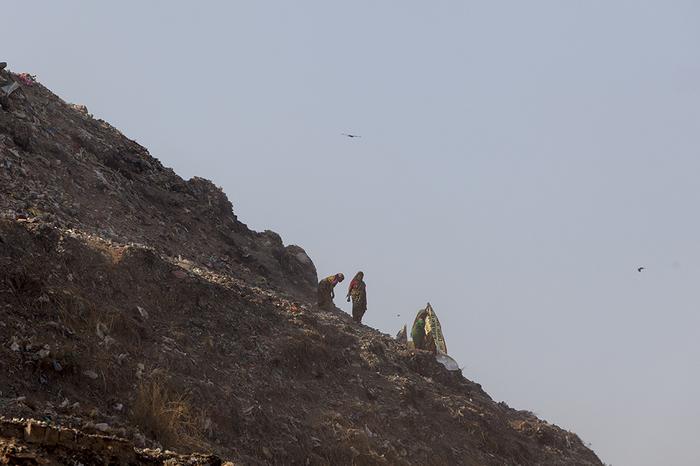 Хочу все знать #267. Шиес у нас. А как у них? - Да никак.Чудовищная гора мусора в Индии скоро станет выше Тадж-Махала Хочу все знать, Индия, Свалка, Шиес, Тадж-Махал, Экология, Видео, Длиннопост