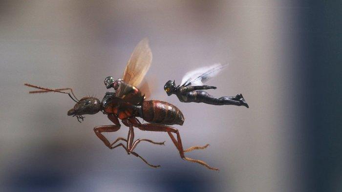 Человек-муравей и квантовая физика Человек-Муравей, Marvel, Наука, Шутка, Квантовая физика, Разбор фильмов, Фильмы, Физика, Длиннопост