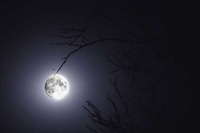 Природный ночной фонарь