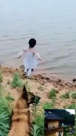 Самая лучшая няня Собака, Животные, Дети, Охрана, Вода, Позитив, Видео, Гифка