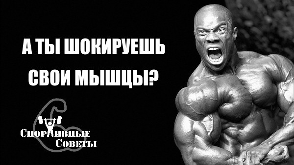 А ты шокируешь свои мышцы? Спорт, Тренер, Спортивные советы, Исследование, Программа тренировок, Шок, ЗОЖ, Качалка, Длиннопост
