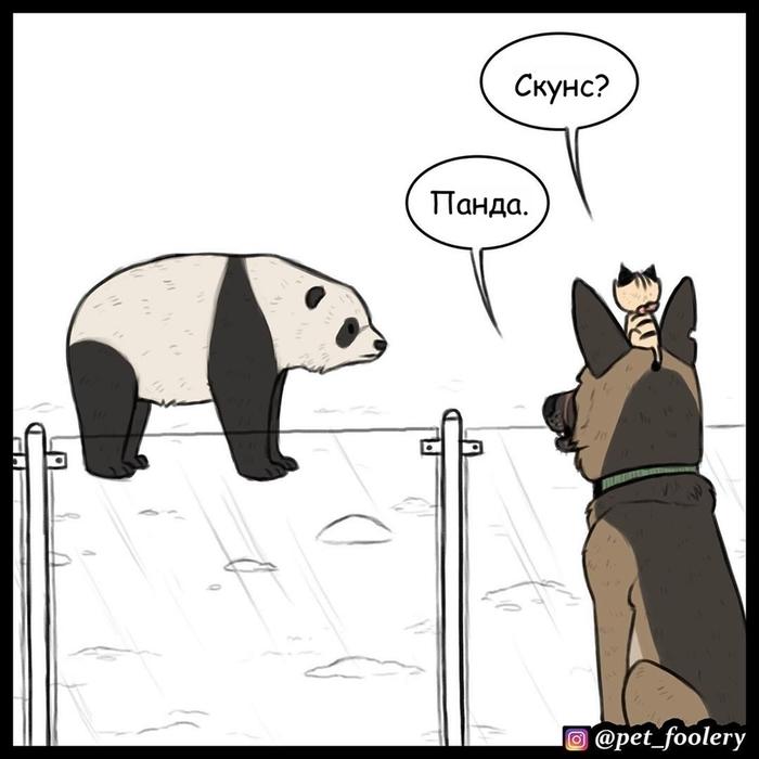 В зоопарке Pet Foolery, Брут и Пикси, Комиксы, Длиннопост, Собака, Кот