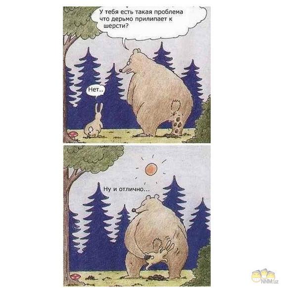 поразила картинки прикол медведь и заяц невозможно спутать