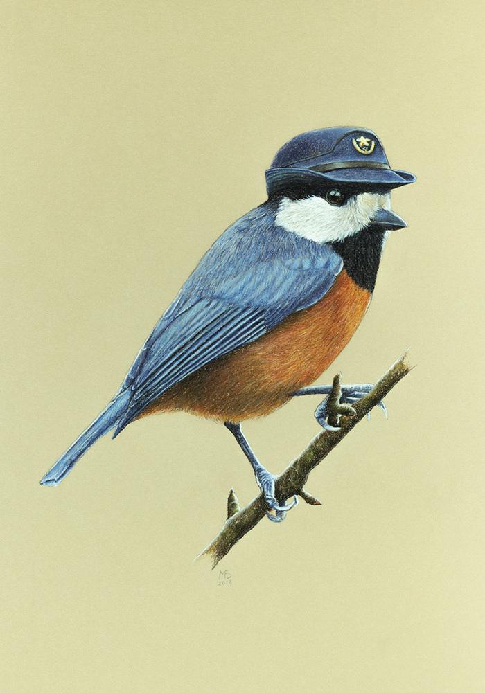птицы в ключе в картинках этом данный вид