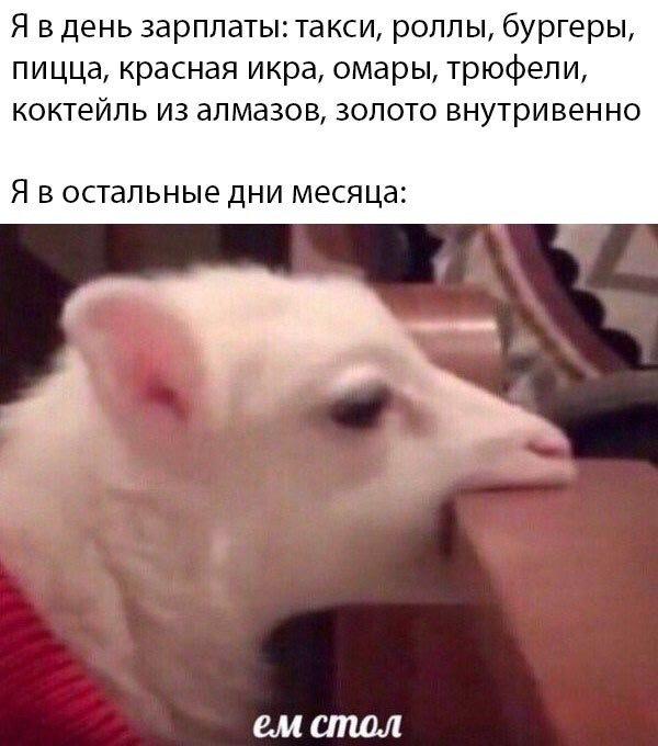 1571998044145785815.jpg
