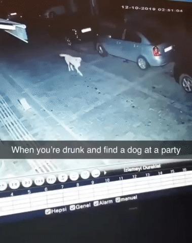 Когда пьяненький возвращаешься домой