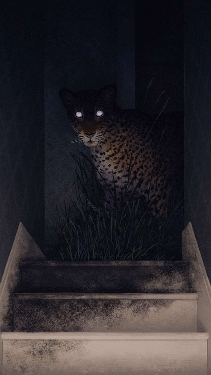 Ты:*вышел ночью на кухню* Арт, Юмор, Леопард, Пантера, Кот, Большие кошки, Светящиеся глаза