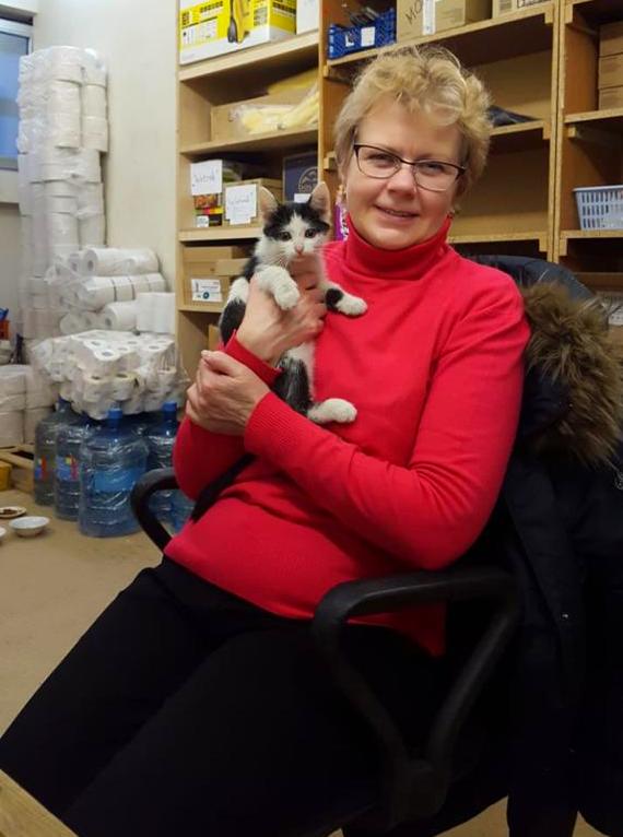 Черно-белый котенок из Питера ищет свой дом. Добрая семья спасла его от мороза Кот, Без рейтинга, В добрые руки, Санкт-Петербург, Ленинградская область, Длиннопост