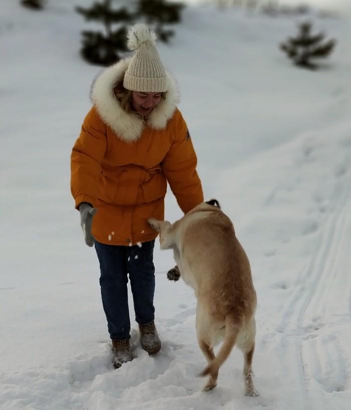 История о том, как я захотела сфотографироваться со своей собакой Собака, Фотосессия, Длиннопост