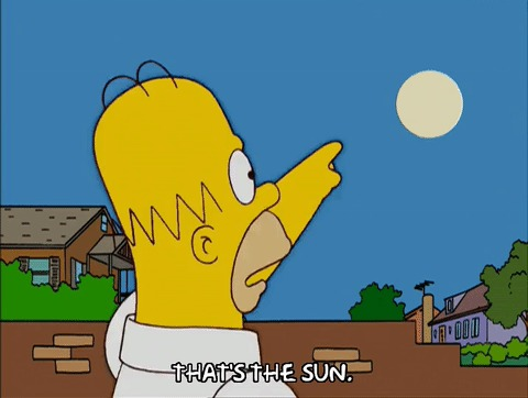 Симпсоны на каждый день [22_Декабря] Симпсоны, Каждый день, День зимнего солнцестояния, Гифка