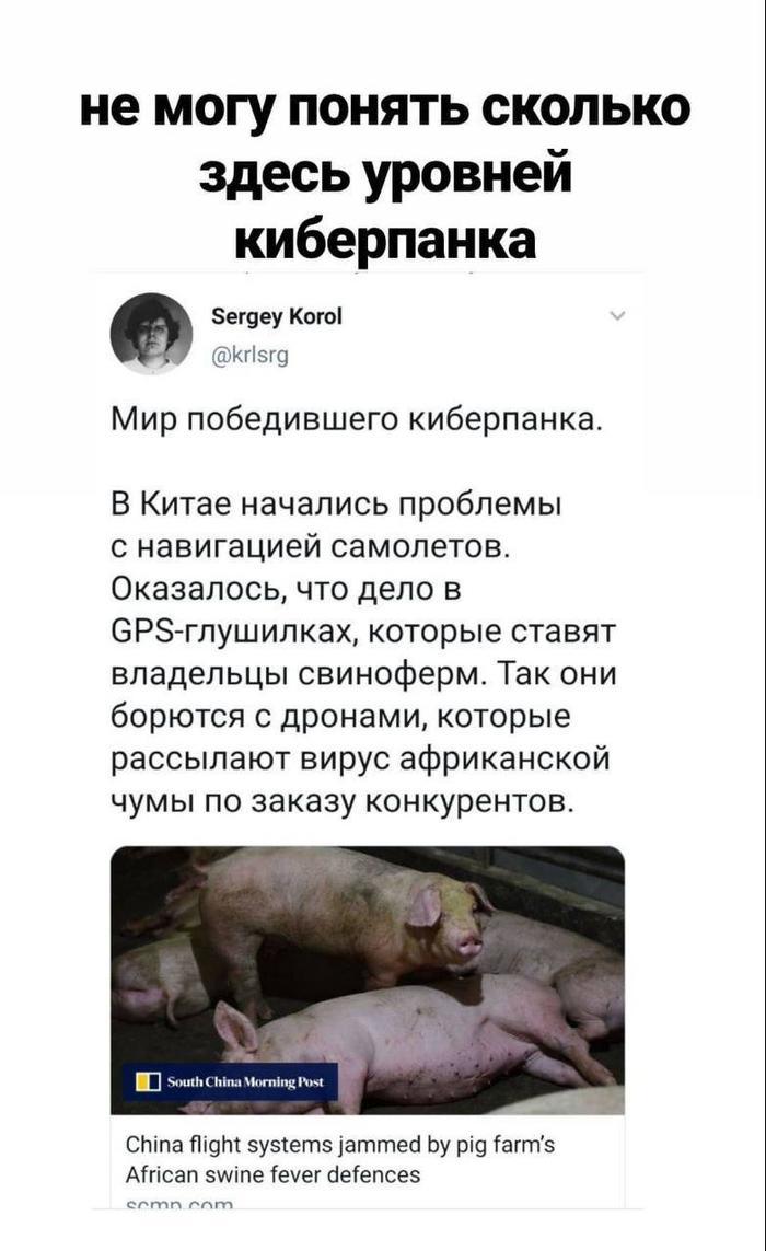 https://cs10.pikabu.ru/post_img/2019/12/24/8/1577188964146289845.jpg