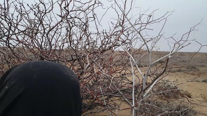 Сказ о том как я по Байконуру гулял к quotМемориалу погибшим испытателямquot и quotКосмическим кораблямquot ч.2
