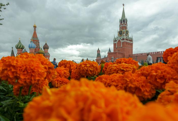 Свой взгляд на Кремль