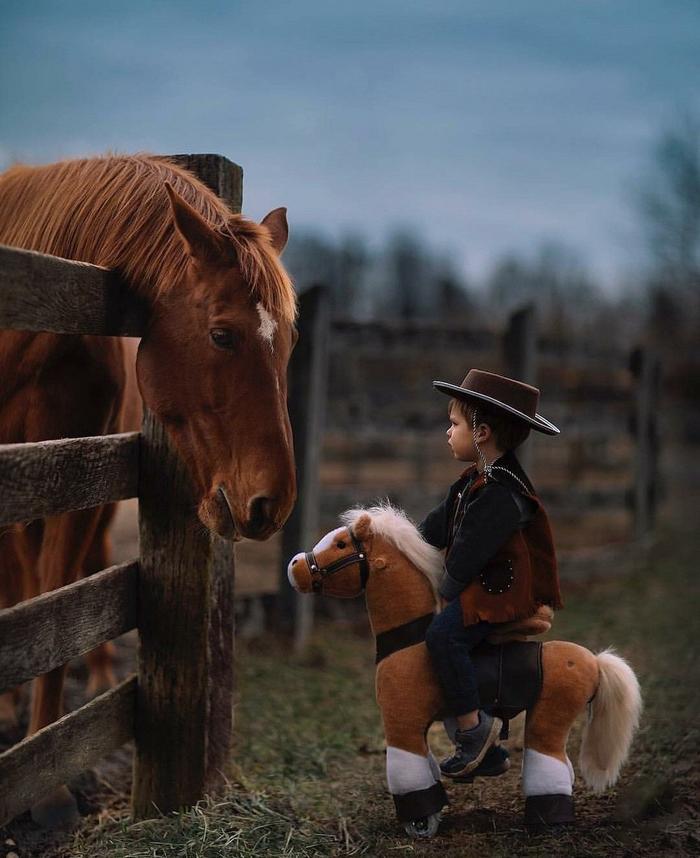 Я люблю мою лошадку