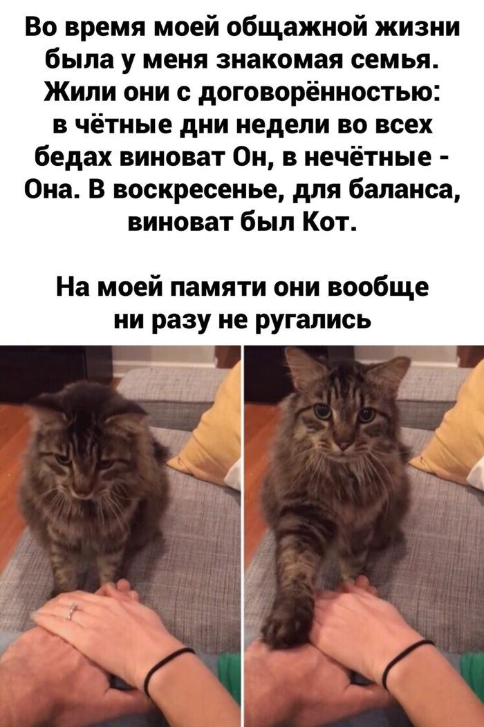 1580639672154961892.jpg