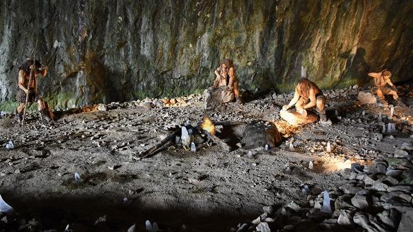 Неандертальцы — жизнь у моря и использование морских ресурсов Наука, Археология, Антропология, История, Исследования, Длиннопост, Неандерталец, Раскопки, Видео, Гифка