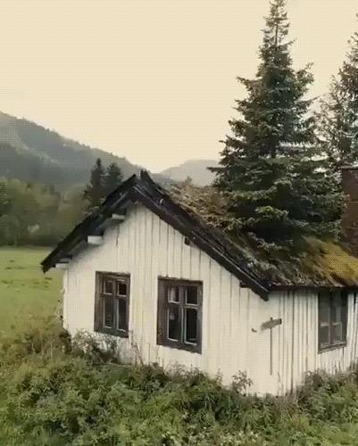 Домик лесника в Норвегии