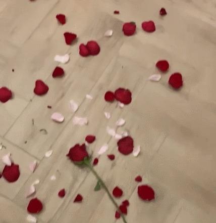 Когда приготовил девушке сюрприз на день всех влюбленных День святого Валентина, Сюрприз, Ванна, Животные, Собака, Гифка