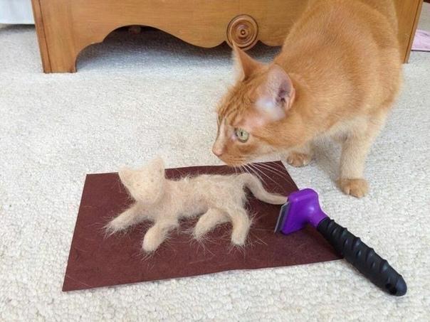 Оказалось показалось или чесалка для кота