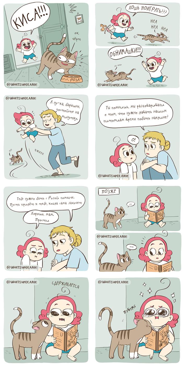 Подруга кошка