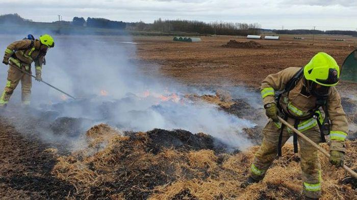 Хрюшка сожгла свой свинарник, покакав проглоченным шагомером Пожар, Пожарные, Бекон, Шагомер, Свинья