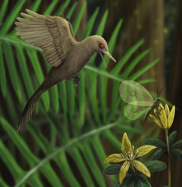 В янтаре обнаружен самый маленький динозавр