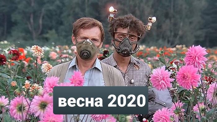 https://cs10.pikabu.ru/post_img/2020/03/31/8/1585662261187836661.jpg