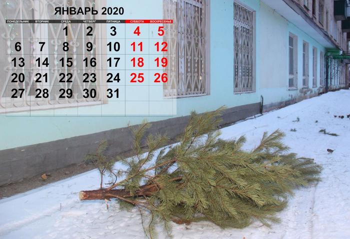 Календарь засранца 2020