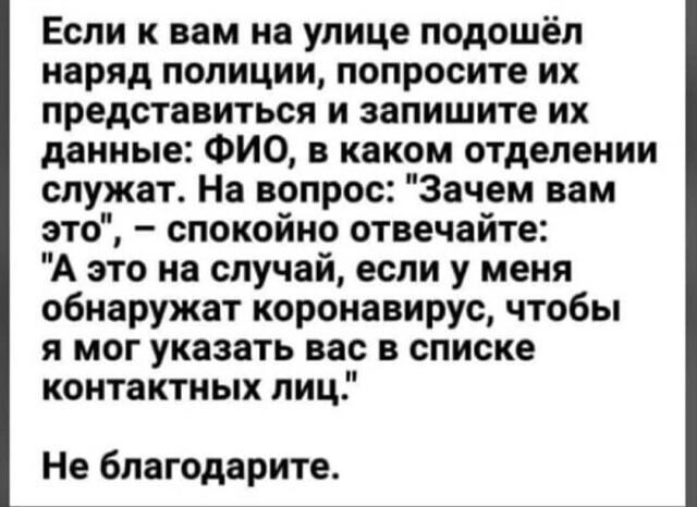 https://cs10.pikabu.ru/post_img/2020/04/14/4/1586842108122730958.jpg