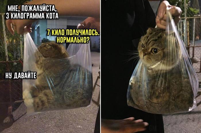 Мне, пожалуйста, 3 килограмма СЧАСТЬЯ!