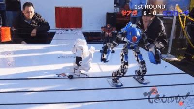 Современные бои роботов в Японии Бой, Робот, Япония, Гифка, Робототехника, Битва роботов