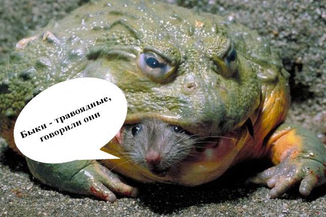 Вредные лягушки