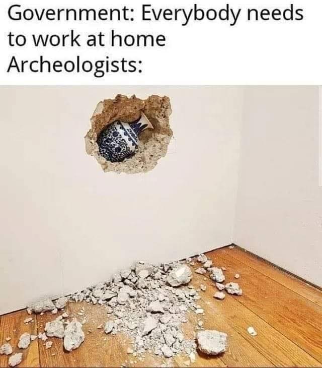 -Правительство: работайте дома. Археологи...