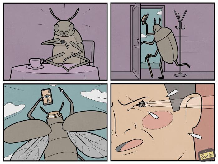 Будни насекомых